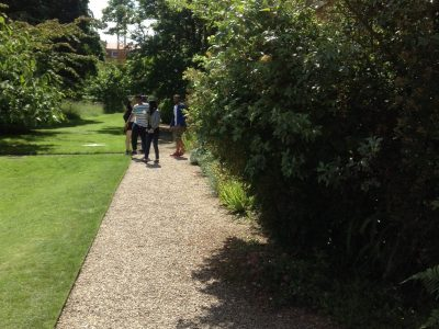 Summer Campus Gardens